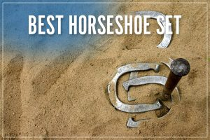 Best Horseshoe Set