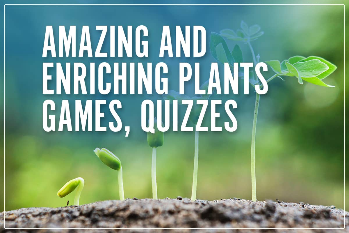 interactive plant games