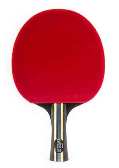 Stiga Titan Ping Pong Paddle